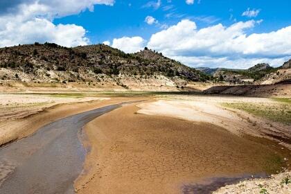 Preocupación por la sequía en la provincia de Sevilla.