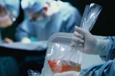Andalucía bate récords en trasplantes de órganos