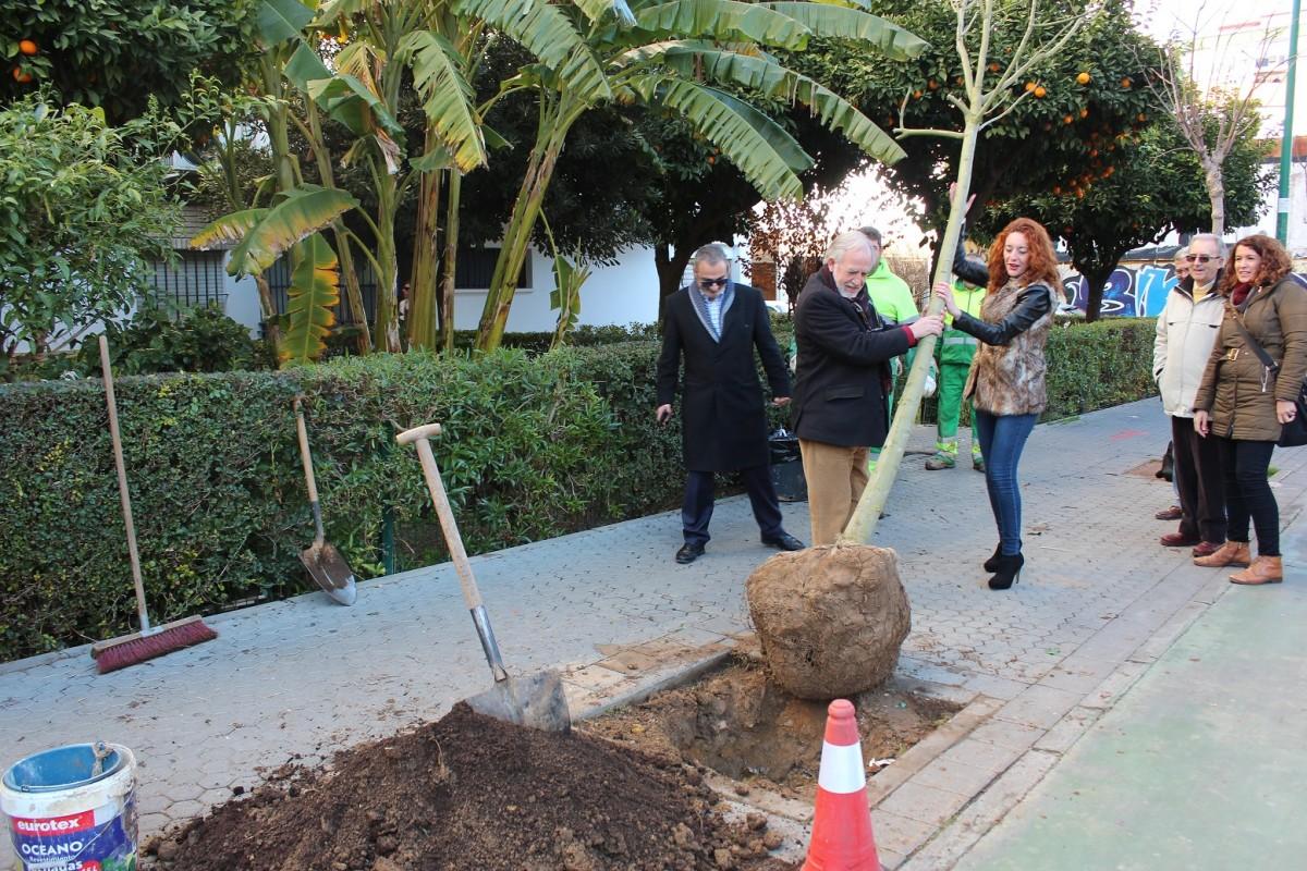 Foto plantación árboles Distrito Macarena