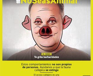 Campaña de la Junta de Andalucía contra los piropos