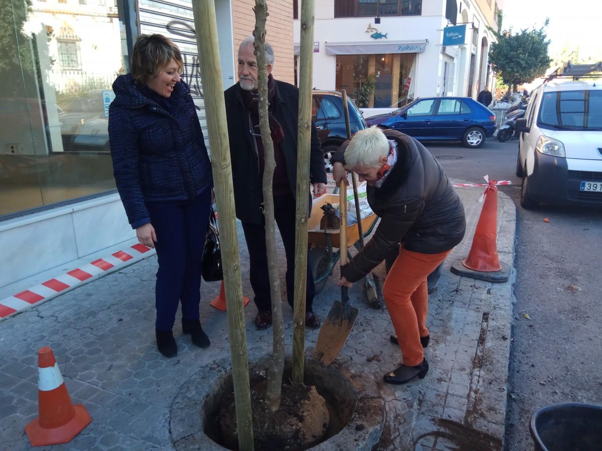 Nuevos árboles plantados en los alcorques vacíos de calle Júpiter