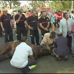 Imágenes que hacen daño a Sevilla