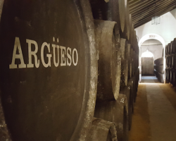 Fallece Francisco Argüeso Hortal, miembro destacado de la firma de viticultores de Sanlúcar de Barrameda