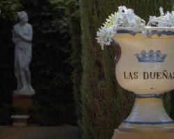 """""""Palacio de Las Dueñas, de Sevilla a China"""" de Acceptus Producciones, premiado por GECA y Fundación SGAE como el Mejor Proyecto Innovador en la Gestión Cultural en el Sector Audiovisual en Andalucía 2020"""