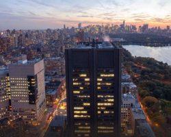 """Dos """"murciégalos"""" en Nueva York. Capítulo V y último (Vídeo Final)El desenlace de la investigación para SevillaInfo sobre dos 'murciégalos' con destino a Nueva York para ayudar a salvar al mundo de la amenaza global de una pandemia. Una historia real pero 'adobada' y con un final feliz"""