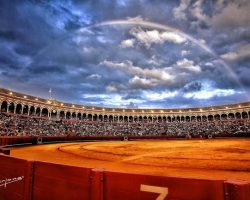 Gran incertidumbre en la organización de espectáculos taurinos en Andalucía