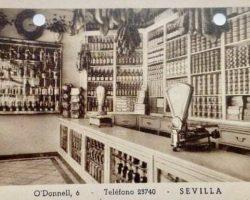 Memoria urbana del paladar (VII)Abacerías, ultramarinos y coloniales de la Sevilla de años 50