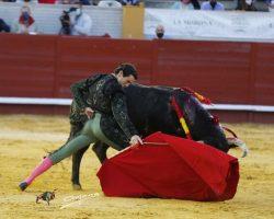 Morón de la Frontera: Los toros de Murube y Juan Pedro restan arte al cartel del arteJuan Ortega cortó la única oreja mientras Urdiales y Aguado chocaron contra enemigos imposibles