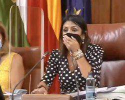 Una rata siembra el desconcierto en el Parlamento andaluz mientras se debatía la fuga de Susana Díaz al Senado