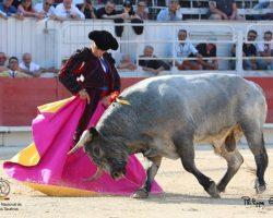 Más ruido que nueces en la corrida de los santacoloma de La Quinta en ArlésAguado acompañó al toricantano local Maxime Solera en su salida a hombros