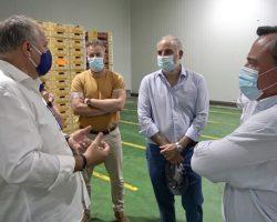 """VOX critica que la Junta no proteja al sector hortofrutícola andaluz de la invasión de productos marroquíesMacario Valpuesta: """"Están malvendiendo sus productos, ya que es prácticamente imposible competir en precio"""""""