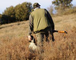 """VOX no apoyará la Ley de Bienestar Animal del Gobierno de Andalucía por atacar la cazaManuel Gavira: """"Contempla la desaparición de algunas modalidades de caza tradicionales como la cetrería, la caza de la perdiz con reclamo o la desaparición de algunas razas de perros de caza"""""""